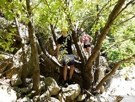 neda-waterfalls-4 ▷ Cascadas Neda Gemas ocultas de Grecia