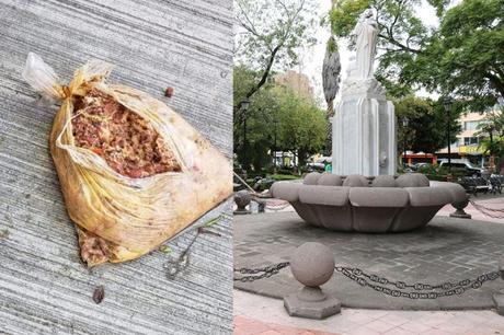 Presuntas bolsas con carne y veneno para perros encontradas en Tequis