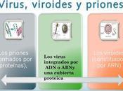 primeras imágenes tridimensionales viroides