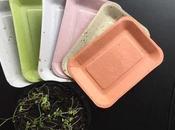 Maiz Piña transforman platos pueden plantar