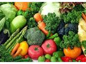 Llevar Dieta Saludable Evita Daños Planeta