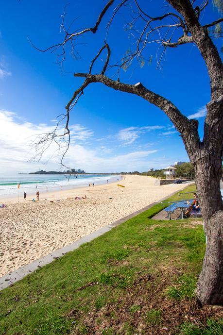 IMG_8141 ▷ Comentario sobre 3 ciudades de playa en la Costa del Sol en Queensland por Family Travel en Australia | Costa del Sol - Viajes
