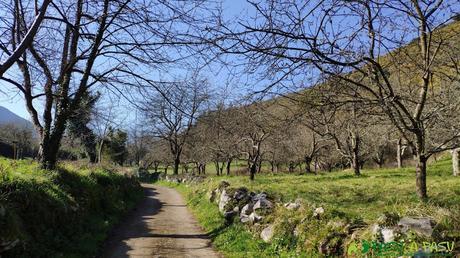 Últimas fincas saliendo de El Valle hacia Siones