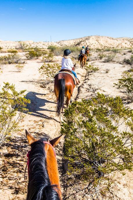 lajitas-texas-horse-ride-5-1 ▷ My Fun Horse Ride en Lajitas, Texas