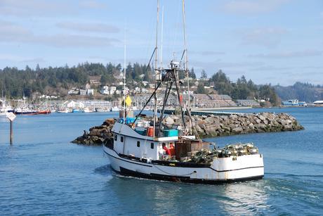 newport ▷ 12 mejores lugares para alojarse en la costa de Oregon