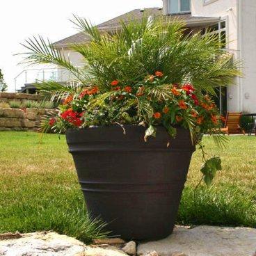 Plantas en macetas paperblog - Macetas para plantas de interior ...