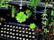 Convertir maquina escribir antigua jardinera