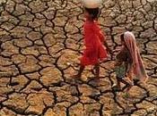Lucha molecular contra sequía