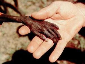 Un niño que muere de hambre es un asesinato