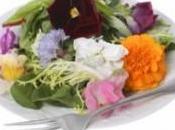 Conoce flores comestibles