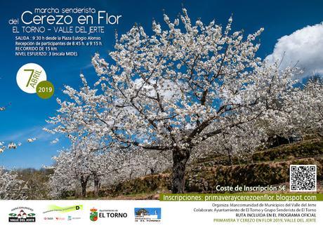 La marcha senderista del Cerezo en Flor 2019 será el 7 de abril en El Torno
