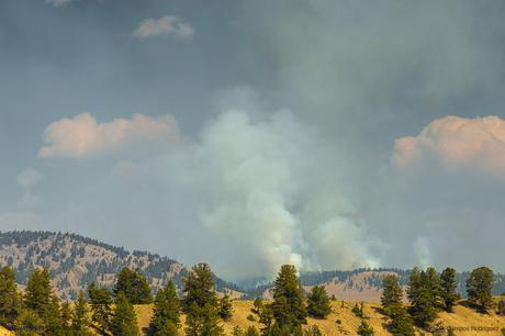 Las fumadoras y vapores de géiseres pueden divisarse donde quiera que uno mire, muchas veces confundidos con el humo de incendios naturales. Se trata del paisaje natural de Yellowstone