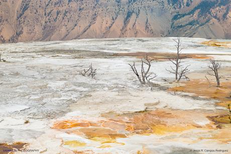 El paisaje de Mammoth Hot Springs