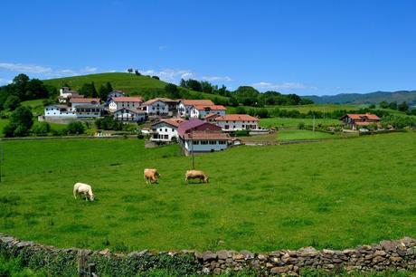 Aniz-que-ver-1024x683 ▷ Que ver en el Valle de Baztán en Navarra