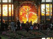 """Llega espectáculo """"sol sol"""" cosmovitral jardín botánico"""