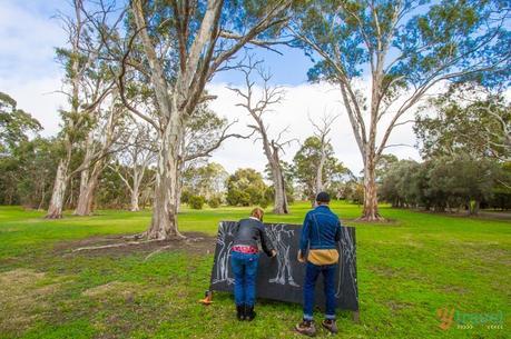 Jacobs-Creek-Barossa-Valley-South-Australia-94 ▷ Comenta sobre 45 cosas que debes saber sobre Australia antes de viajar por Adv. Santosh Reddy