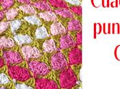 Cuadrado puntos piña Crochet