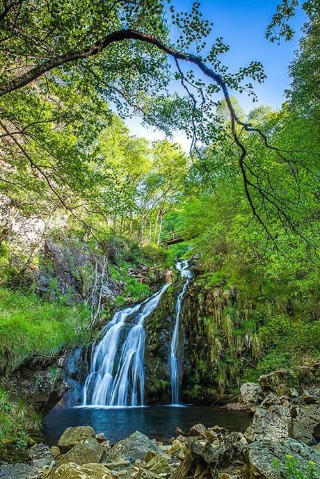 d5cf3bf9-9148-4910-8cca-9053eb18ac95?t=1553166710007 ▷ 10 postales para celebrar la primavera en Asturias ✅