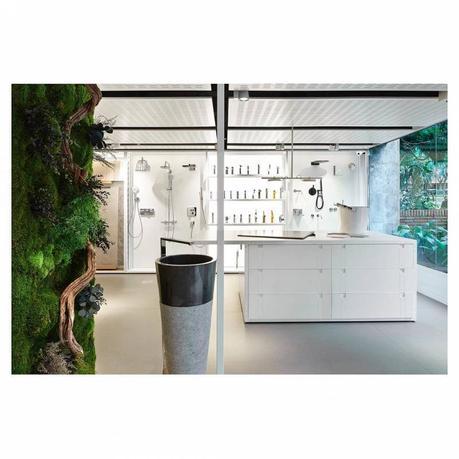 molinsdesign_40552946_335328480347366_6760385208359022509_n diseños de casas con jardin interior