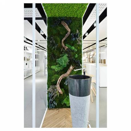 diseños de casas con jardin interior