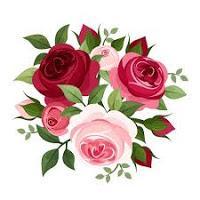 RESEÑA | Una Corte de Rosas y Espinas de Sarah J. Maas