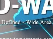 ¿Cómo funciona SD-WAN?