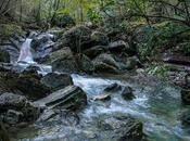 Agua montaña