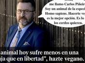 """RESPUESTA ARTÍCULO: animal sufre menos granja libertad"""""""