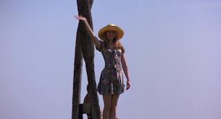 Todo por un sueño (To die for, Gus Van Sant, 1995. EEUU / GB & CAN)