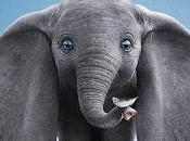 Dumbo enseña volar