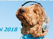 Reporte anual consumo música 2018 (IFPI)
