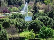 Conoce Parque Tierno Galván Madrid
