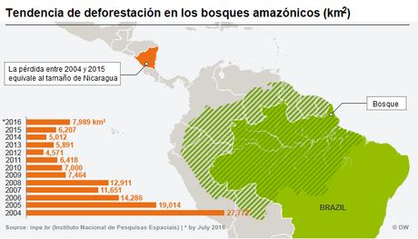 deforestaciona amazonia