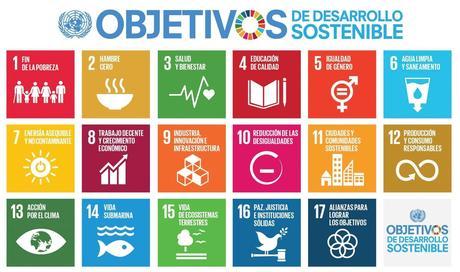 S SDG Poster Letter