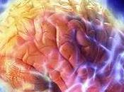 Misterio Alzheimer (audio vídeo completo)