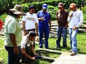 Taller ecuador 2011
