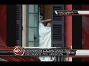 Shakira Piqué cazados ropa interior Italia. Vídeo fotos