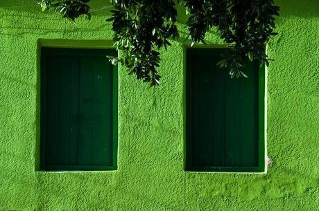 COLOR CRAZY V: GREEN