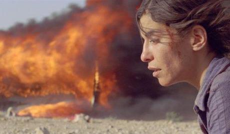Diario Aragonés: Incendies