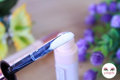 Nuevos Cut Crease Canvas de Makeup Revolution