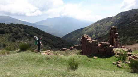 De Collformic al Pla del Cafè | Parc Natural del Montseny