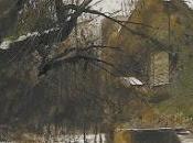 """bosque"""" Nell Leyshon"""