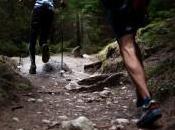 pescado, básico dieta runners montaña