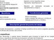 Vacante: Coordinador Ingeniería Agroempresarial