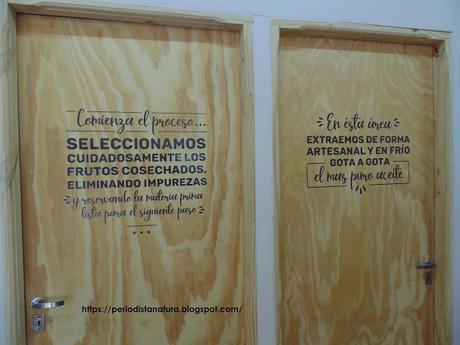 ROSA MOSQUETA, EL ORO ROJO DE LA PATAGONIA