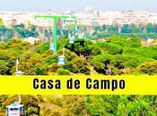 Casa Campo Madrid