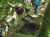 Senderismo trekking agua: trucos consejos.