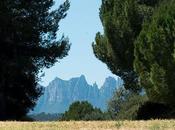 Cataluña para foodies: parte