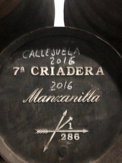 Callejuela Manzanilla Madura