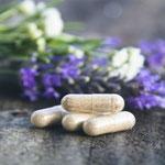 Suplementos probióticos, una ayuda fundamental para cuidar tu salud